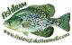 FishTram's Avatar